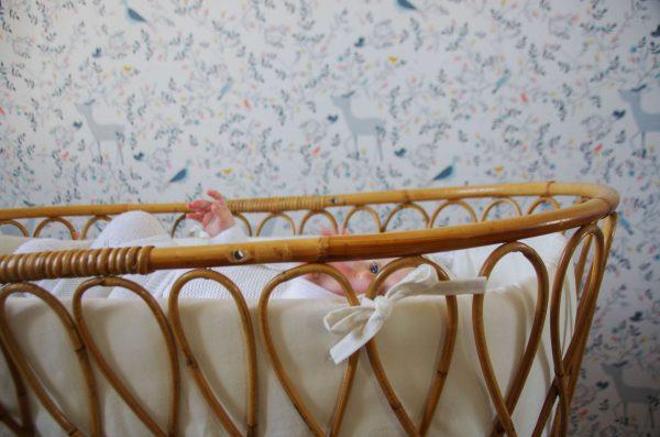 coton-blanc-naissance